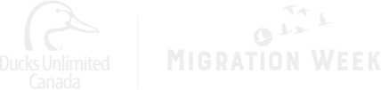 Migration Week Logo